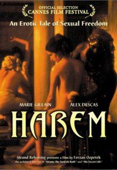 Türk Hamamı Sex Filmi Harem Suare